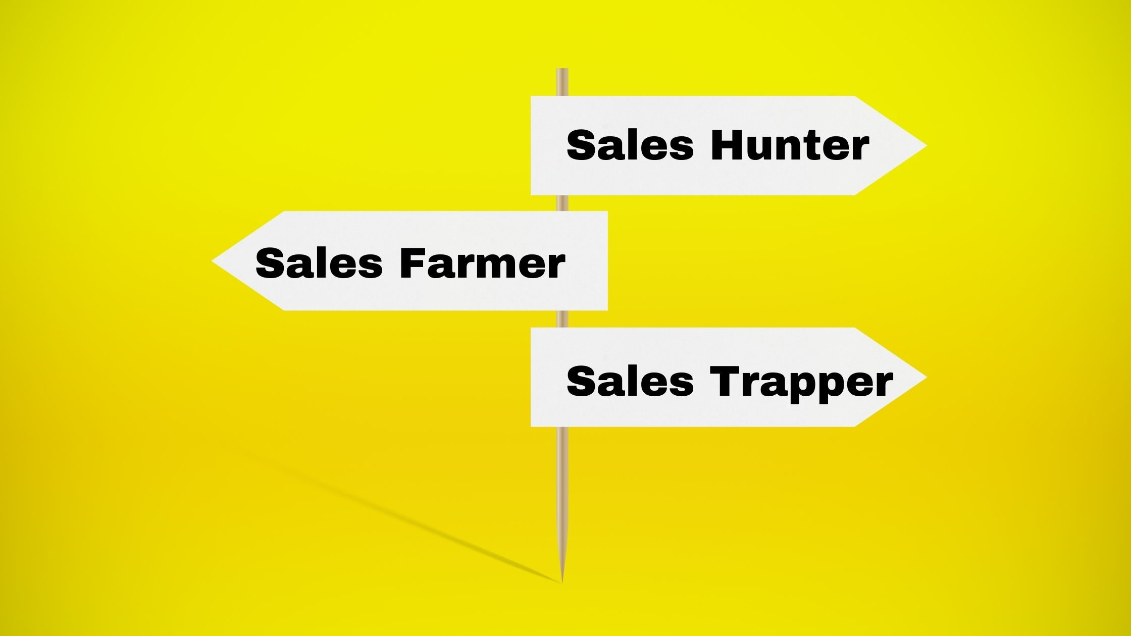 sales personality
